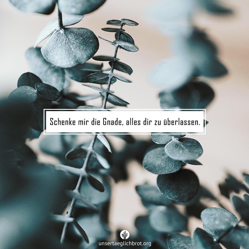 share_odb_2020-07-16