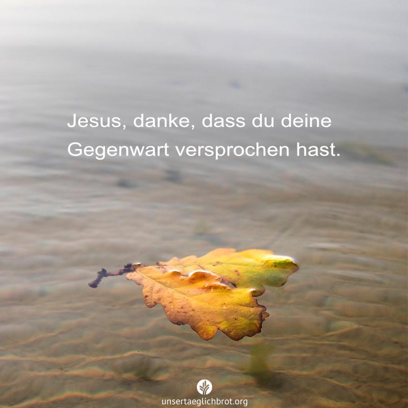 share_odb_2021-01-02
